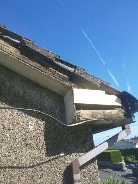 Skin Beading Replacement Fascia and Soffit Repair in Dublin